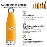 Aorin 750ml Trinkflasche (Orange) - 4